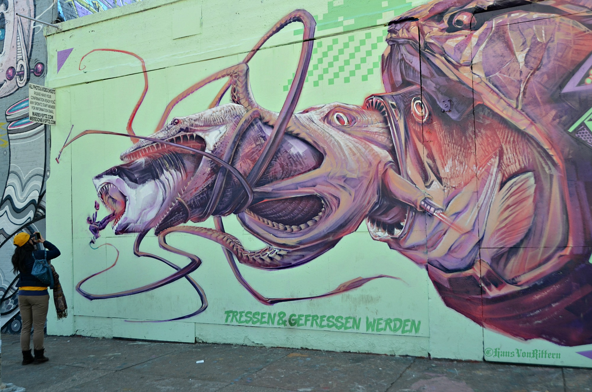 3 Dimensional Graffiti Murals New York City In The Wit Of An Eye