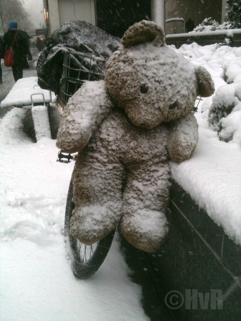 TEDDY BEAR SNOW