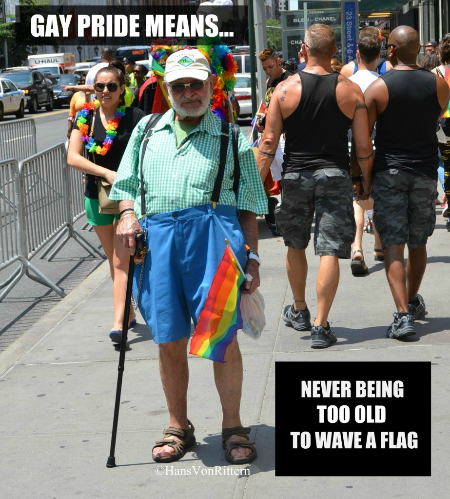 GAY PRIDE MEANS - FLAG